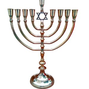 9 Branches Menorah